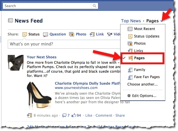 Facebook News Feed - Pages View