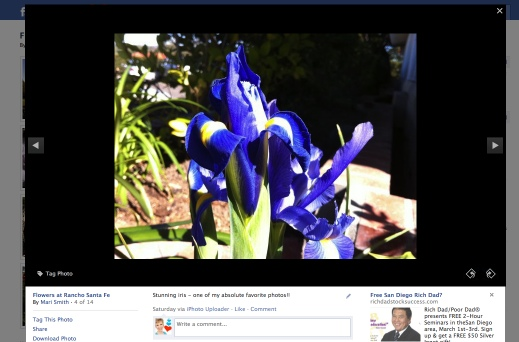 Facebook photo viewer lightbox iris