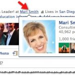 Facebook Fan Page Hover Card Mari Smith