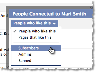 Facebook Fan Page Subscribers