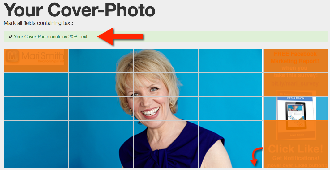 Mari Smith - Facebook cover image 20% test