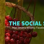 social-scoop-facebook-roundup-9-30-16