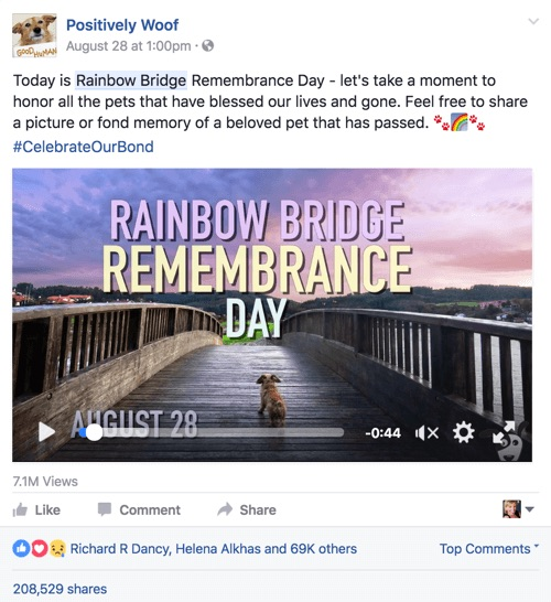 Rainbow bridge remembrance day Facebook video