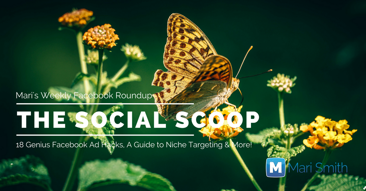 18 Genius Facebook Ad Hacks, A Guide to Niche Targeting & More: The Social Scoop 2/18/17