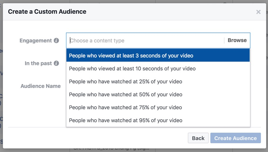 facebook_video_audience