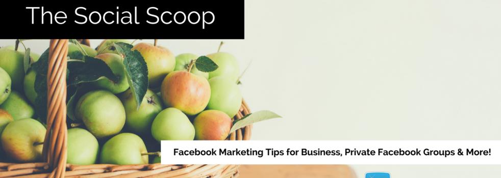 Monetize Your Facebook Videos, 45 Facebook Tips, Facebook Groups & More: The Social Scoop 2/24/17